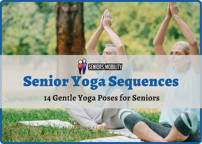 Senior Yoga Sequences